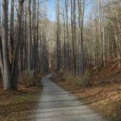 The North Bend Rail Trail out of North Bend State Park, near Cairo, West Virginia ( Jake Lynch)