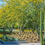 Sunnylands Center Gardens is a 15-acre extension of the 200-acre desert estate of U.S. Ambassador Walter Annenberg. (Photo: Coachella Valley Water District)