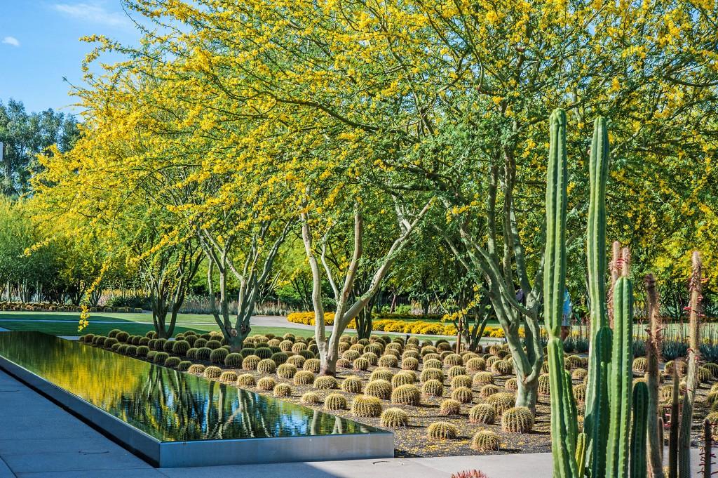 Landscape Architects Share Sustainable Design Concepts Smart