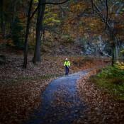 A man rides his bicycle along Rock Creek Park in Washington D.C. November 5, 2015. REUTERS/Carlos Barria - RTX1UYW4