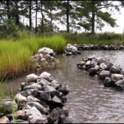 (Credit: Center for Coastal Resources Management, Virginia Institute of Marine Science)