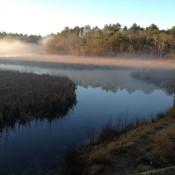 2016-0519-National-Wetland-Program