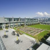 Residential rooftop garden and green space