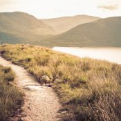 Trails can be sustainably planned to minimize human impact in areas that will get a lot of visitors. (Martin McCarthy/iStock)