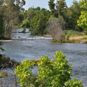 American River (Credit: US Bureau of Reclamation)