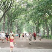 Central Park in New York City generates $1 billion in economic benefits annually. (Source: Wikimedia Commons)
