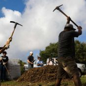 Using pickaxes to dig a hole at the Woods of Shavano for a rain garden aimed at retaining stormwater and reducing pollutants that reach the Edwards Aquifer (Ray Whitehouse / The San Antonio Express-News)