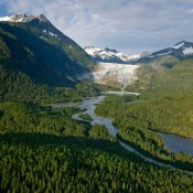 Mendenhall Glacier in Alaska's Tongass National Park (Source: americanforests.org)