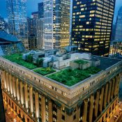 Green roofs can bring nature to urban neighborhoods and help mitigate noise (Diane Cook And Len Jenshel / Getty Images / National Geographic Creative)