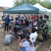 Community engagement is a critical part of the development of an urban farming project in South Phoenix. (Credit: DSGN AGNC)