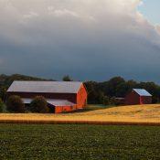 baltimore-county-farm-Beau Considine-Flickr-square