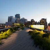 A view of the Chelsea Grasslands on the High Line (Tim Schenck)
